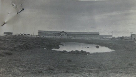 A swampy Maroubra reserve and surf sheds, c.1920s. State Records NSW.