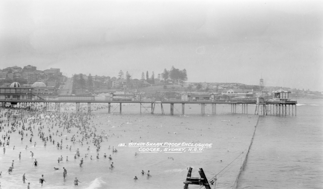 In 1929 the Randwick Council strung a shark net across Coogee Beach, creating a remarkably popular and safe bathing enclosure. (State Library NSW: a1470235h)